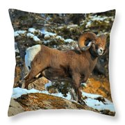 Blending In In Jasper Throw Pillow