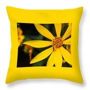 Blending In Throw Pillow