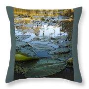 Blind River-4 Pm-september '15 Throw Pillow