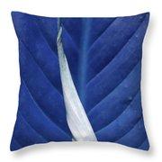 Blissfully Blue Throw Pillow