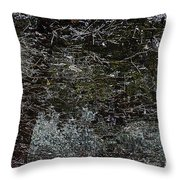 Blizzard. Throw Pillow