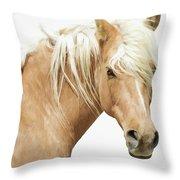 Blonde Stallion Throw Pillow