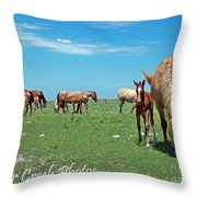 Blondes, Brunettes And Redheads Throw Pillow