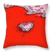 Blood Red Heart Reef Throw Pillow