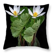 Bloodroot Duo Throw Pillow