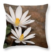 Bloodroot Flowers Throw Pillow