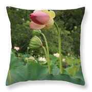 Bloom Among The Pods Throw Pillow
