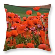 Bloom Red Poppy Field Throw Pillow