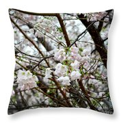 Blooming Apple Blossoms Throw Pillow