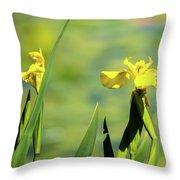 Blooming At Green Lake Throw Pillow