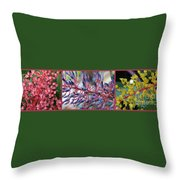 Blooming Bromeliads Collage Throw Pillow