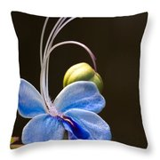 Blooming Butterfly Throw Pillow