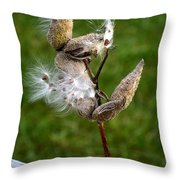Blooming By The Fence Throw Pillow