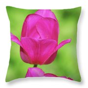 Blooming Dark Pink Tulip Flower Blossom In A Garden Throw Pillow