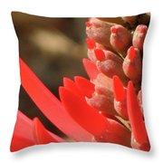 Blooming Fire Spike Throw Pillow