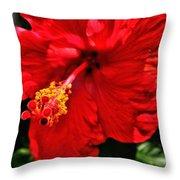 Blooming Flower 2 Throw Pillow