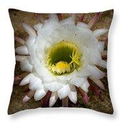 Blooming Hedgehog Cactus Throw Pillow