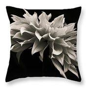 Blooming II Throw Pillow