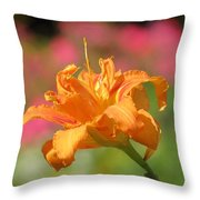 Blooming In August Throw Pillow