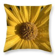 Blooming In My Ditch Throw Pillow