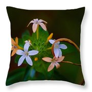Blooming Joy Throw Pillow