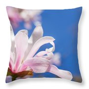 Blooming Magnolia Flower Throw Pillow