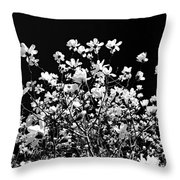 Blooming Magnolia Tree Throw Pillow