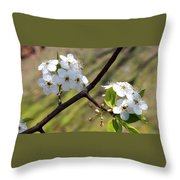 Blooming Pear Tree Throw Pillow