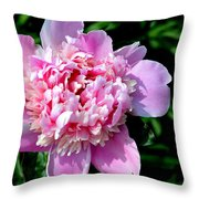 Blooming Peony Throw Pillow