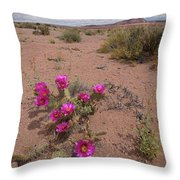 Blooming Prickley Pear Throw Pillow