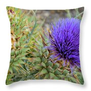 Blooming Purple Teasel Throw Pillow