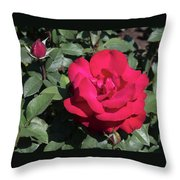 Blooming Rose With New Rose In Garden Throw Pillow