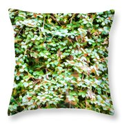 Blooming Shrubs  Throw Pillow