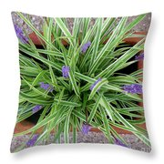 Blooming Spider From Above Throw Pillow
