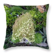 Blooming Succulent Plant. Amazing Throw Pillow