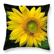 Blooming Sunflower Closeup Throw Pillow