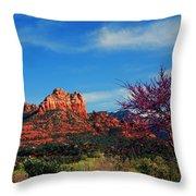Blooming Tree In Sedona Throw Pillow