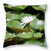 Blooming Waterlily  Throw Pillow