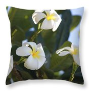 Blooms In Paradise Throw Pillow