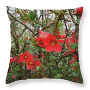 Blooms In The Alley Throw Pillow