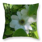 Blooms In Vine Throw Pillow