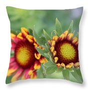 Blooms Of Color Throw Pillow