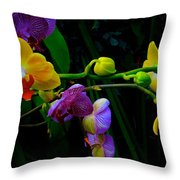 Blooms To Come Throw Pillow