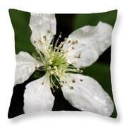 Blossom Square Throw Pillow