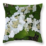 Blossom Sunbath  Throw Pillow