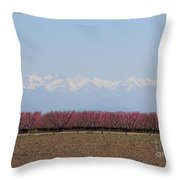 Blossom Trail 2 Throw Pillow