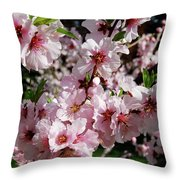Blossoming Almond Branch Throw Pillow