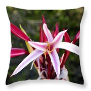Blossoming Beauty Throw Pillow