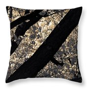 Blossoming In Santa Fe Throw Pillow