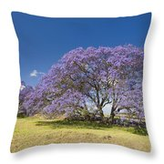Blossoming Jacaranda Throw Pillow